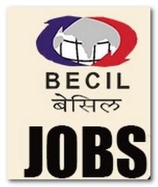 बेसिल नौकरियां 2019