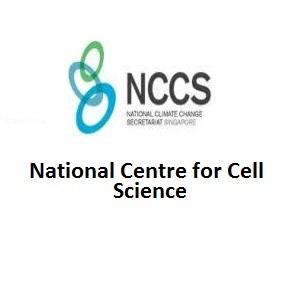 NCCS jobs