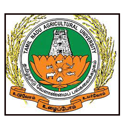 TNAU Notification 2019 – Openings For Various Manager, Dean Posts
