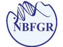 NBFGR NOTIFICATION 2019