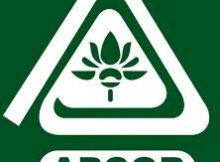 APCOB Notification 2019