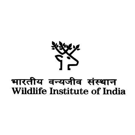 WII Notification 2019