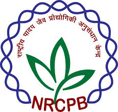 NRCPB Notification 2019 – Opening for Various RA, JRF/SRF Posts