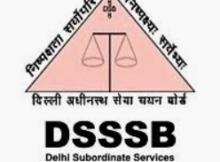 DSSSB Job