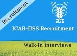 ICAR-IISS Notification 2019 – Openings For Various Young Professional Posts