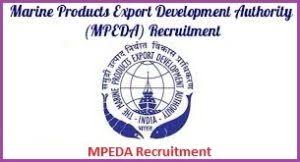 MPEDA Notification 2019 – Openings For Various IT Professional Posts