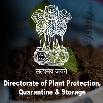 DPPQS Notification 2019 – Opening for Various Consultant Posts