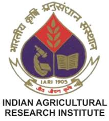 IARI Notification 2019 – Opening for Various JRF Posts