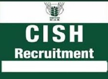 ICAR-CISH Recruitment