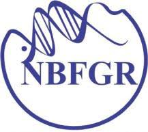 NBFGR Notification 2019 – Opening for Various Assistant Posts