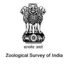 ZSI Notification 2021 – Openings For Various JRF Posts