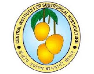 CISH Notification 2020 – Opening for Various JRF Posts