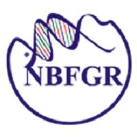 NBFGR Notification 2020 – Opening for Various Executive Posts