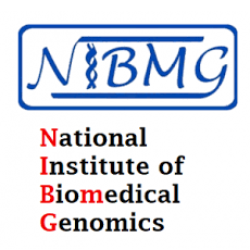 NIBMG Notification 2020 – Opening for 09 Technical Associate Posts