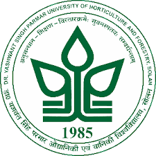 YSP-University-Notification-2020