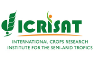 ICRISAT Notification 2021 – Opening for Various JRF Posts