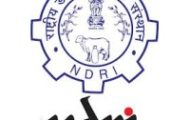 NDRI Notification 2020 – Opening for Various Associate Posts