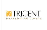 Trigent Notification 2021 – Openings For Various Executive Posts